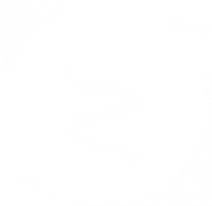 icona-spirale-e-lampsy-bianco